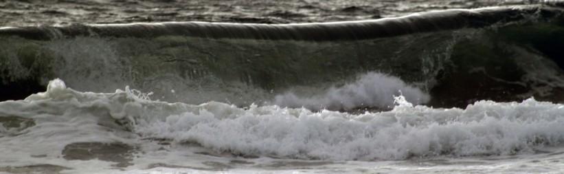 Fraser Surf