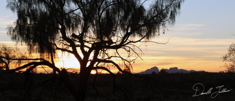 Outback SunsetSig
