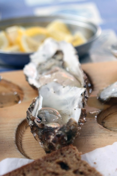 Oysters.72dpi