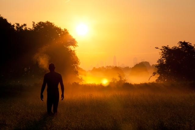 Dawn at Richmond Park