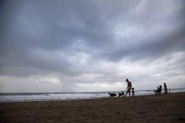 Sloth Beach140114_21