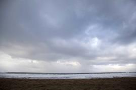 Sloth Beach140114_22