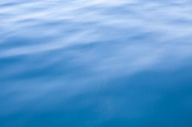A study of Water-221