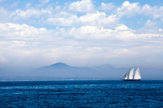 Pacific Ocean Landscapes